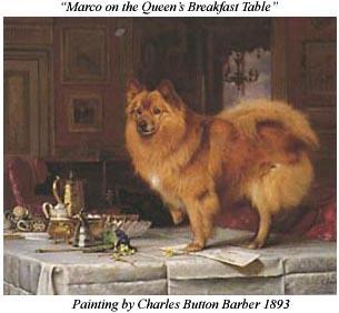 пес марко у королевы Виктории
