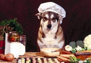 полезные продукты для собак