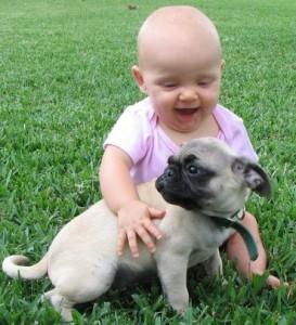 мопс и ребенок